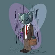 over qualified koala can t a job josiah norton over qualified koala can t a job in this hiring market