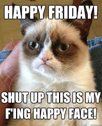 Happy Friday! Shut Up This IS Cat Meme - Cat Planet | Cat Planet via Relatably.com