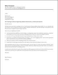 job letter programmer system analyst programmer resume s programmer lewesmr