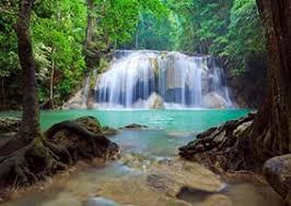 Картинки по запросу таиланд экскурсии