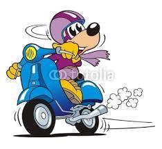Bildergebnis für motorrollerfahrer