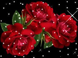 وردة قلبي.. images?q=tbn:ANd9GcR
