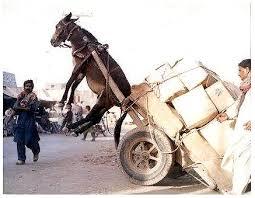 Resultado de imagem para homem empurrando uma carroça