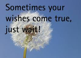 Wishes Quotes - Sometimes your wishes come true, just wait !