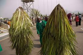 Image result for masquerades photos