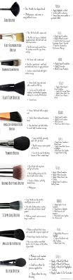makeup brushes 101 deled guide on how to use your set best makeup guide for beginners by makeup tutorials at