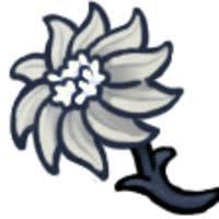 Delicate <b>Flower</b>   Hollow Knight Wiki   Fandom