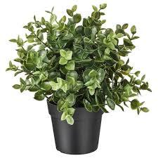 <b>Искусственные</b> цветы и <b>растения</b> - купить в интернет-магазине ...