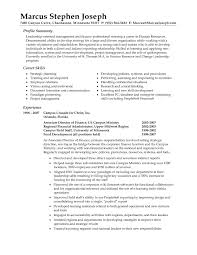 resume job summary example of resume job summary resume career job example of resume for job resume examples photo summary of job skills examples for resume superb