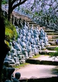 41 Best Kyoto images | Beautiful places, Destinations, Japan travel