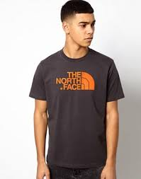 <b>Футболка</b> с логотипом <b>The North Face</b> | ASOS