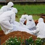 Deadly Nipah virus, which can harm brain, experiencing outbreak in India