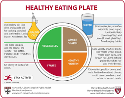 healthy eating essays healthy eating habit a good habit essays a healthy eating plate harvard healthhealthy eating plate