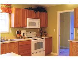 wall color ideas oak: chic kitchen paint colors ideas