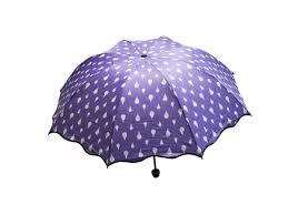 <b>Зонт</b> Хамелеон Капельки <b>Violet</b> 98775 - Чижик