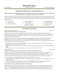 vp business development resume business development resume account vp business development resume