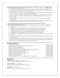 resume template federal resume sample