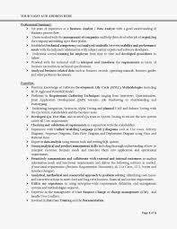 business analyst cv summary coverletter for job education business analyst cv summary become a functional consultantbusiness analyst i love entry level resume summary examples