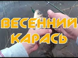 Alexander Chernov's Videos | VK