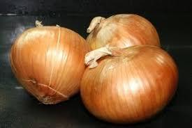 Afbeeldingsresultaat voor uien planten
