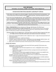 samples quantum tech resumes vp software s resume sample rick gallery of vp s resume
