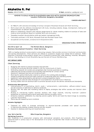 business analyst resume template best agenda templates business analyst resume template 4