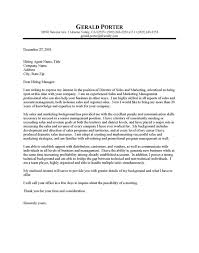 Sales Executive Cover Letter Examples with Ceo Cover Letter   My