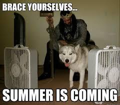 Summer 2015 Begins in 15 Memes | The Grasshopper via Relatably.com