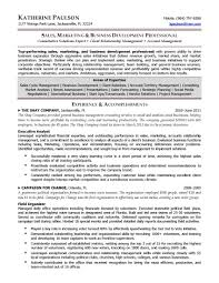 executive assistant to ceo resume ceo cfo executive resume chief ceo resume pdf