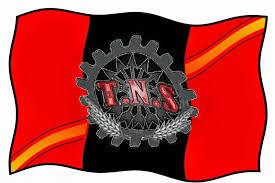 Resultado de imagen de bandera sindicato tns
