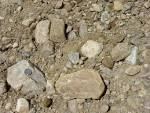 Images & Illustrations of bank gravel