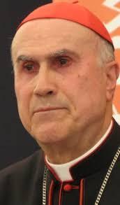 Cardinal Tarcisio Bertone - cardinal-tarcisio-bertone