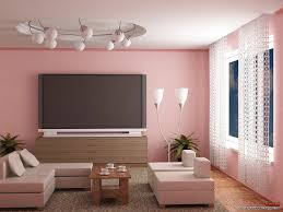 Paints Colors For Living Room Living Room Chic Combination Of Living Room Paint Color With Pink