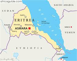After 25 years of failure Let Us Plan For Post Isayas & post PFDJ Eritrea!