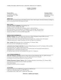 sample of chronological resume format