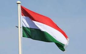 Znalezione obrazy dla zapytania flaga węgierska