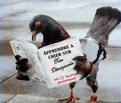 """Résultat de recherche d'images pour """"caricature des pigeons"""""""