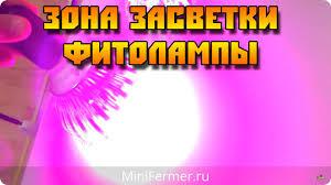 Зона засветки <b>led фитоламп</b> Е27 (выбор лампы) - YouTube