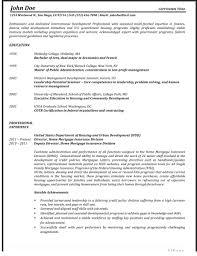 professionally written resume samples rwd cv