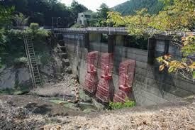 「日本のダムは水を半分しか貯めていない」の画像検索結果