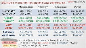 Урок: Немецкие артикли | Немецкий язык, <b>Грамматика немецкого</b> ...