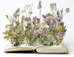 Risultati immagini per fiori che escono dal pc