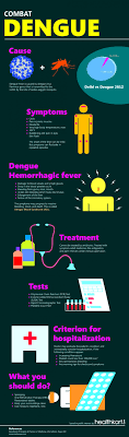 dengue is an infectious mosquito borne tropical disease caused by dengue infographic