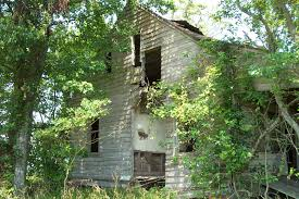 nat turner remnantology the decaying remains of the whitehead house hidden away far from the modern road system