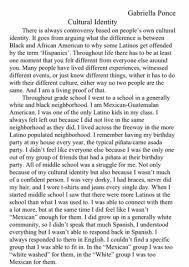 cultural identity essay   gabriella ponce cultural identity essay