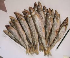 Как правильно солить и вялить рыбу?
