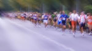 This Hormone Makes Old <b>Mice Run</b> Like Youngsters | Columbia ...
