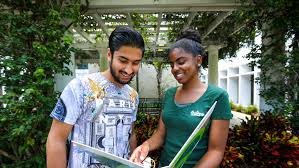 scholarships at into university of south florida scholarships