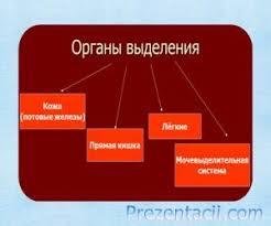 Правоохранительные органы просят выделить дополнительно 17,5 млрд грн на их финансирование, - Яценюк - Цензор.НЕТ 7228