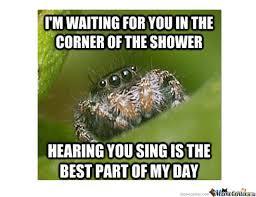 Ok, cure me please: SPIDERS! - Page 5 Images?q=tbn:ANd9GcRqC_NOCDIqlzJ2A7DnCu11D9W_w7W9Ugxlsp9aybAu83NTOfR7hQ